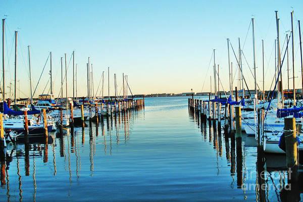 Shirleys Bay Photograph - The Marina by Shirley  Taylor