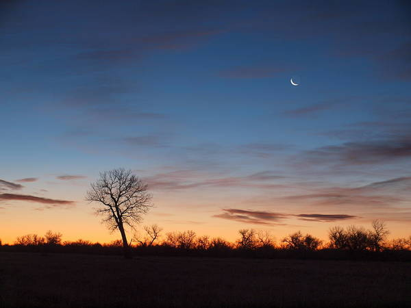 Photograph - The Moon Departs  by HW Kateley