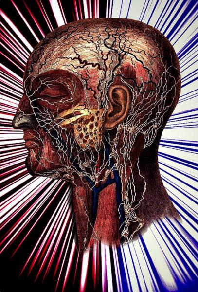 The Nerve Art Print by Nok