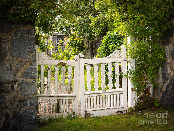 Photograph - The Old Gate by Lutz Baar