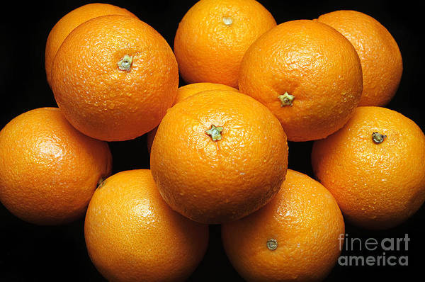 Photograph - The Oranges by Andee Design