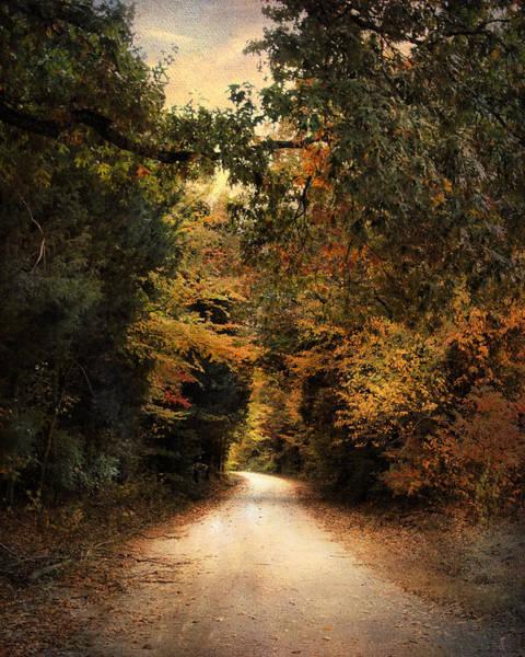 Photograph - The Path Less Traveled by Jai Johnson