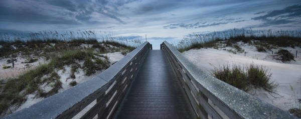 Photograph - The Path by Ryan Heffron