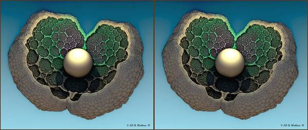 Stereoscopy Digital Art - The Pearl - Gently Cross Your Eyes And Focus On The Middle Image by Brian Wallace