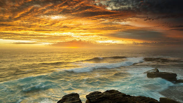 Photograph - The Platform - Long Bay by Mark Lucey