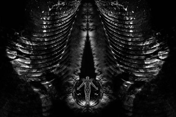 Digital Art - The Portal Between by David Kleinsasser