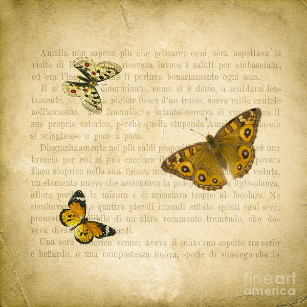 Butterfly Wall Art - Digital Art - The Printed Page 1 by Jan Bickerton