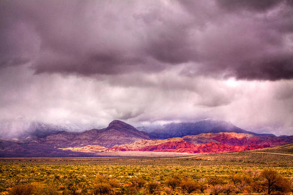 Photograph - The Red Rock Canyon by David Patterson