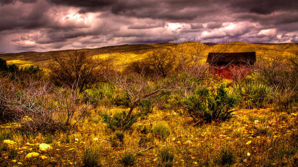 Photograph - The Red Shed At Red Rock Canyon by David Patterson