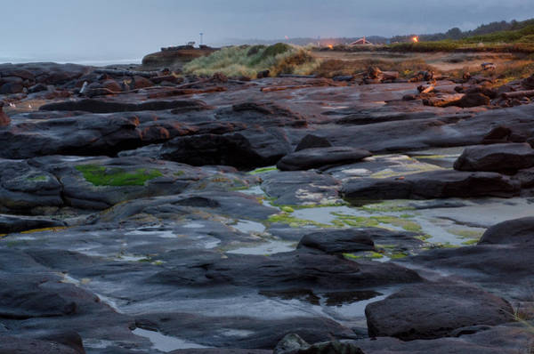 Photograph - The Rocky Shores Of Oregon by Margaret Pitcher