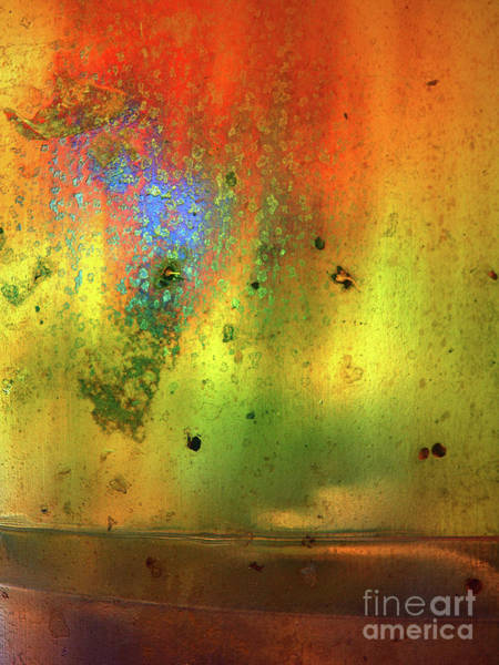 Photograph - The Rust And The Light by Tara Turner
