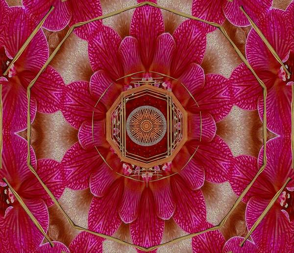 Orchid Mixed Media - The Sacred Orchid Mandala by Pepita Selles