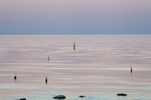 Photograph - The Silence Speaks by Laurie Search