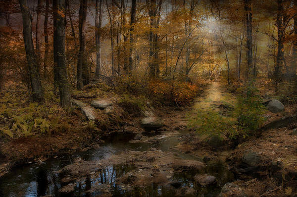 Respite Photograph - The Sound Of Silence by Robin-Lee Vieira
