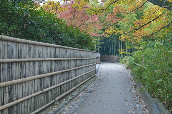 Wall Art - Photograph - The Tenryuji Temple Is A Zen Buddist by Rob Tilley