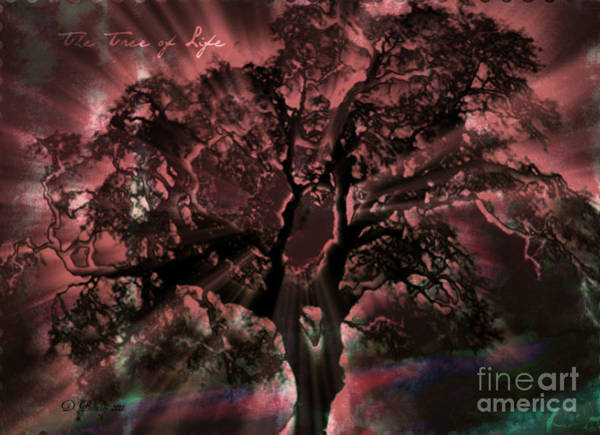 Photograph - The Tree Of Life by Donna Bentley