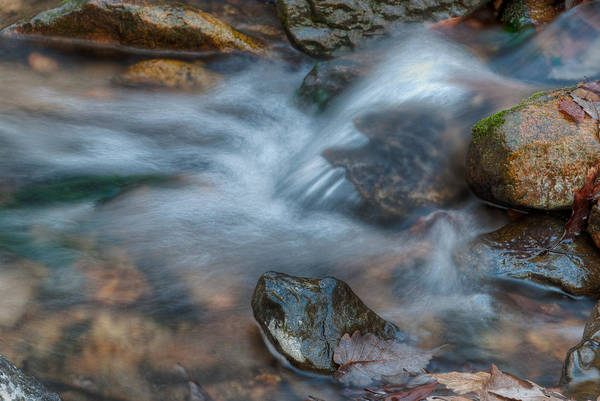 Photograph - The Turtle Rock In Water by Dennis Dame