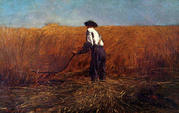 Barley Painting - The Veteran In A New Field by Winslow Homer