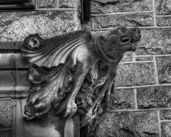 Photograph - The Watchful Gargoyle by Dennis Dame