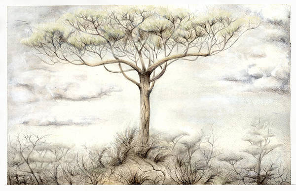 Guache Painting - The White Tree by Bjorn Eek
