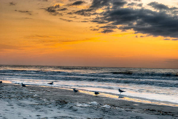 Photograph - The Wintery Feeling Beach At Sunrise by Dennis Dame