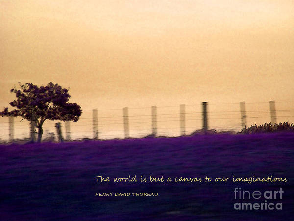 But Photograph - The World Is But A Canvas by Karen Lewis