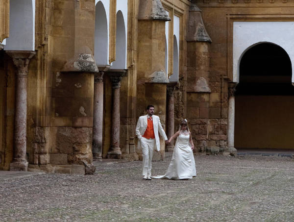 Photograph - They Make Their Entrance by Lorraine Devon Wilke