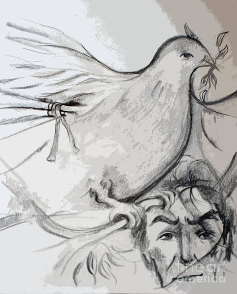 Olive Branch Drawing - Thinking Of Peace by Reza Sepahdari