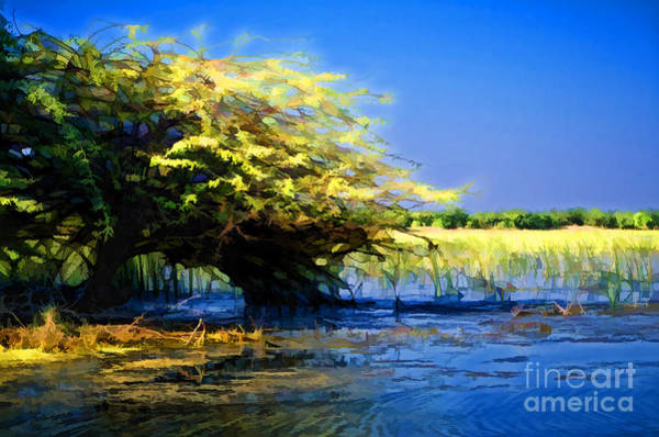 Swan Boats Digital Art - Thirsty Tree by Nilay Tailor