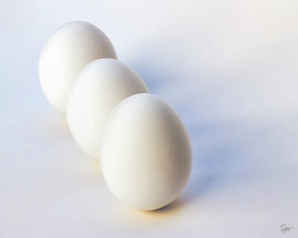 Photograph - Three Eggs In A Row by Endre Balogh