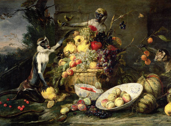 Monkey Painting - Three Monkeys Stealing Fruit by Frans Snyders