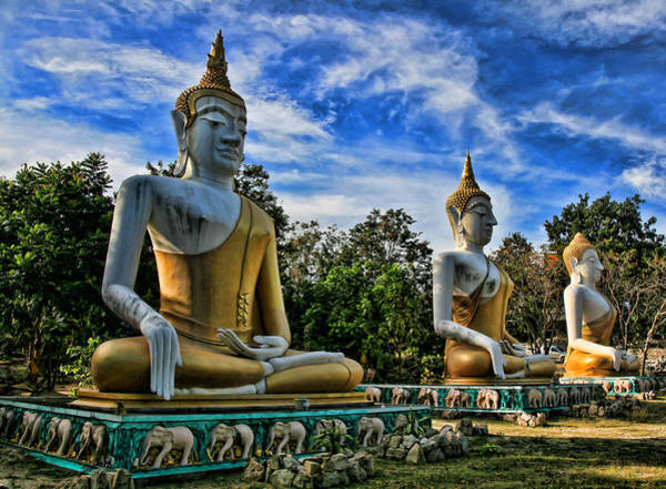 Buddhism Wall Art - Photograph - Three Of A Kind by Adrian Evans