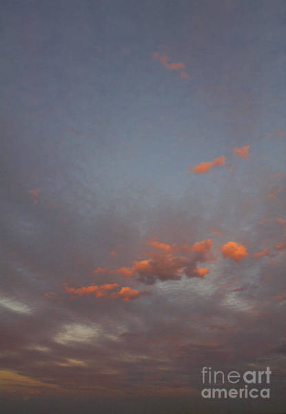 Photograph - Three Pink Clouds by Donna L Munro