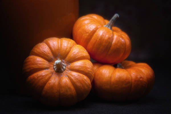 Wall Art - Photograph - Three Pumpkins by Tom Mc Nemar