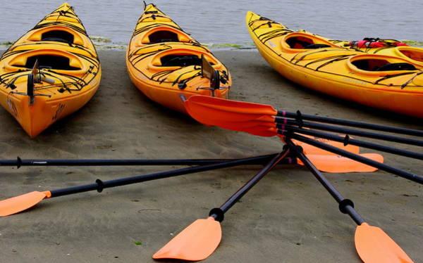 Photograph - Three Yellow Tandem Kayaks by Jeff Lowe