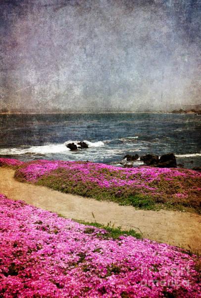 Ocean Grove Photograph - Through The Magic Carpet by Laura Iverson