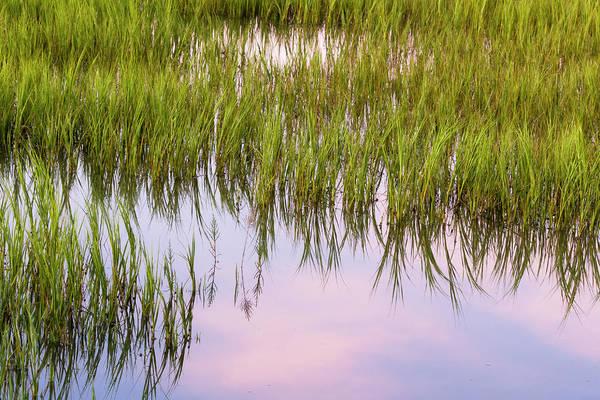 Wall Art - Photograph - Tidal Marsh Reflections  by Drew Castelhano