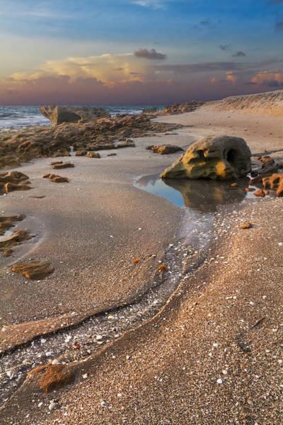 Hobe Sound Photograph - Tidal Pool by Debra and Dave Vanderlaan
