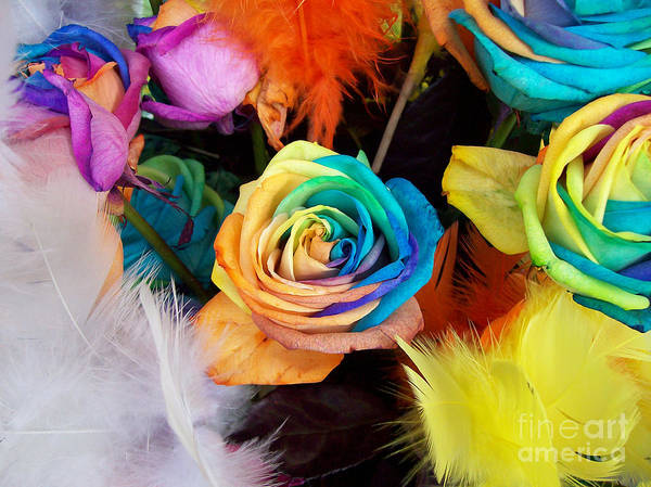 Photograph - Tie Dyed Roses In Japan by Cheryl McClure