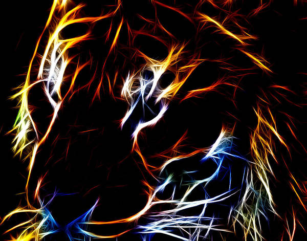 Photograph - Tiger Fractalius by Maggy Marsh