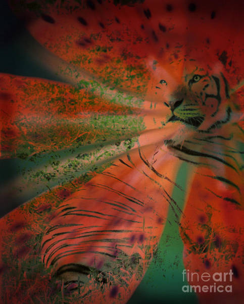 Tigerlily Wall Art - Photograph - Tigerlily by Janeen Wassink Searles