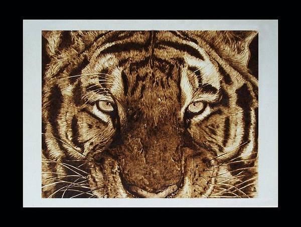 Pirografia Wall Art - Pyrography - tigre di Sumatra by Davide Della Noce