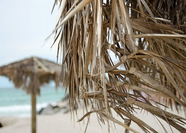 Photograph - Tiki Huts by Margaret Pitcher