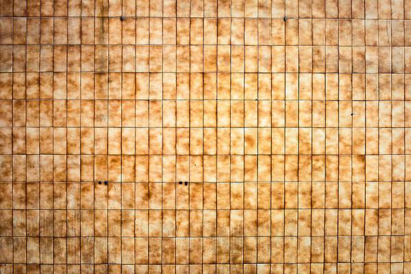 Wall Art - Photograph - Tiled Wall by Tom Gowanlock
