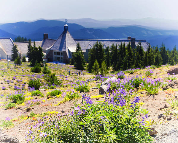 Timberline Photograph - Timberline Lodge At Mt Hood by Vicki Jauron