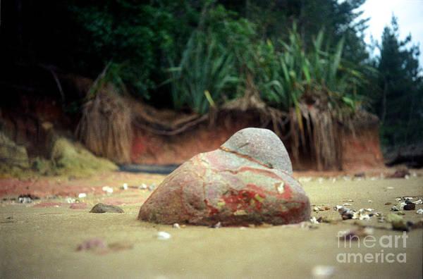 Photograph - Tinopai Beach Rock by Mark Dodd