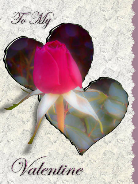 Photograph - To My Valentine by Susan Kinney