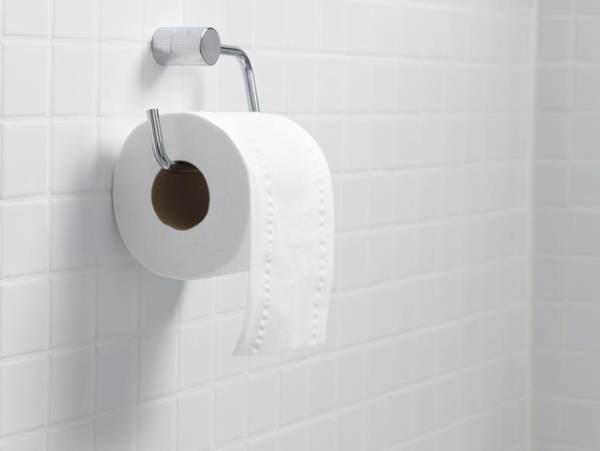 Toilet Photograph - Toilet Paper Holder And Roll by Tek Image