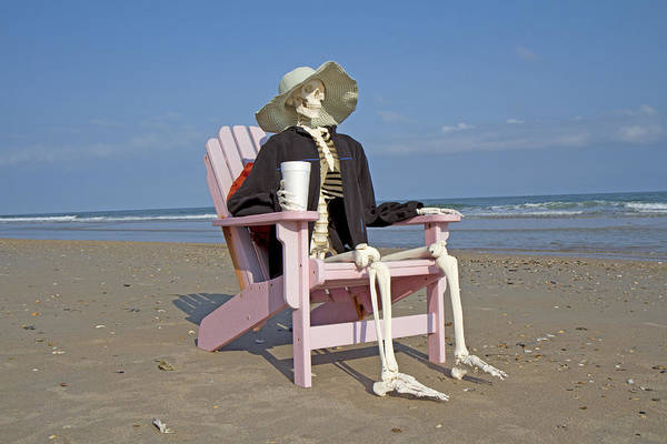 Skeletal System Photograph - Topsail Island Beach Pirate by Betsy Knapp
