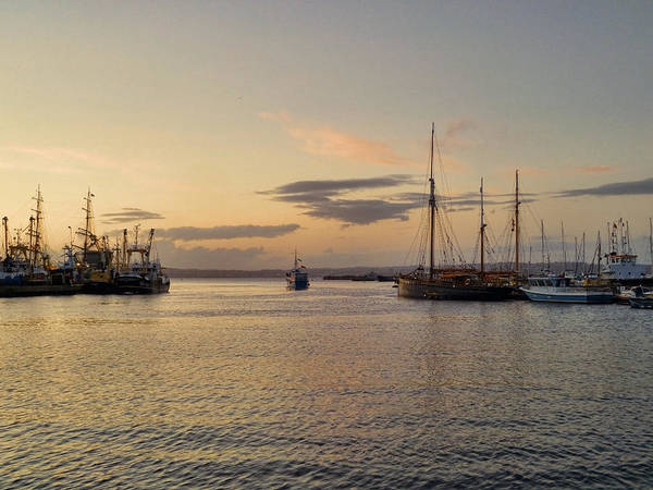 Angling Art Photograph - Toward Open Water 2 by Sharon Lisa Clarke